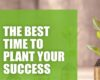 The Best Time to Plant Your Success